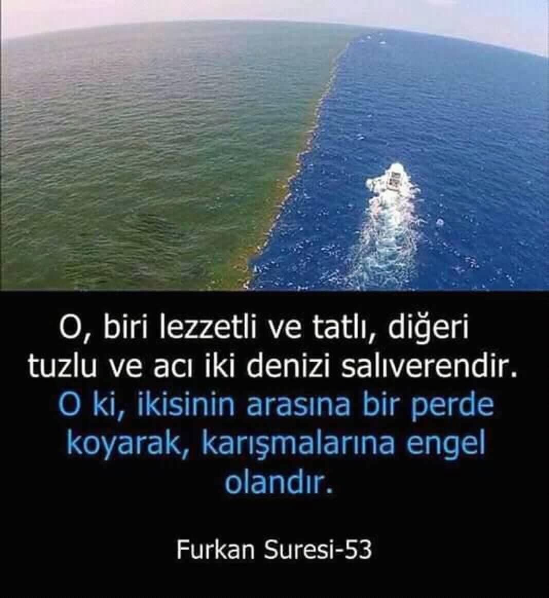 Furkan Suresi 53 | www.corek-otu-yagi.com