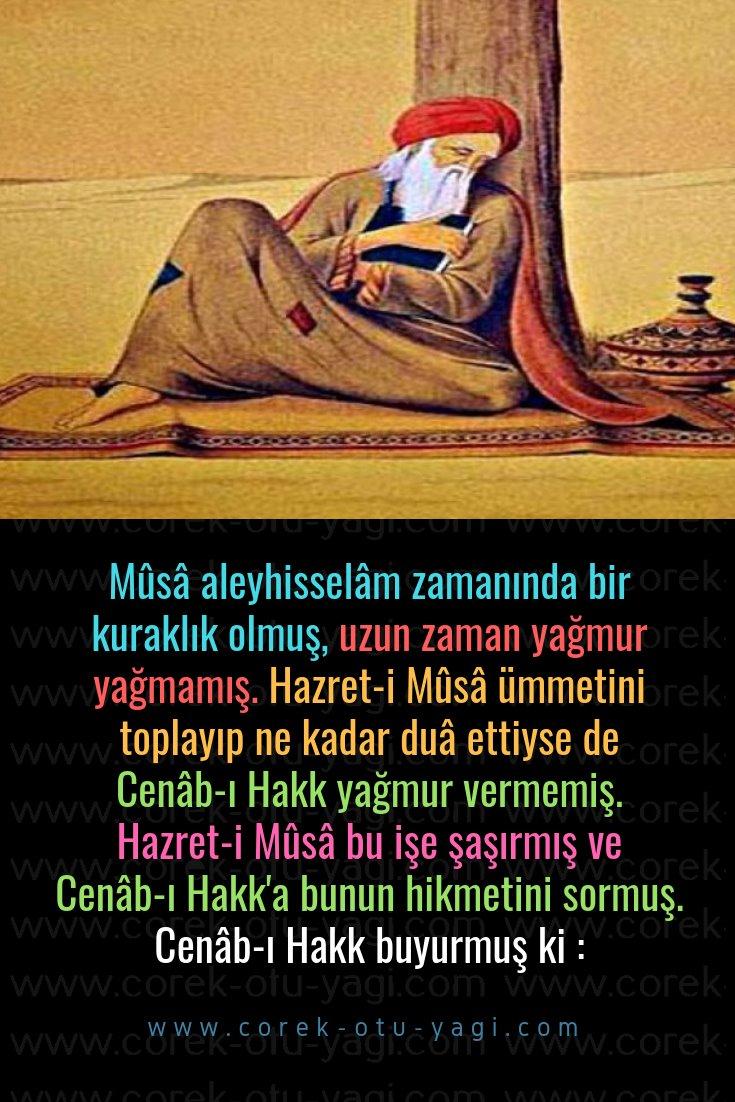 Allah'a Naz Yapan Velî | www.corek-otu-yagi.com