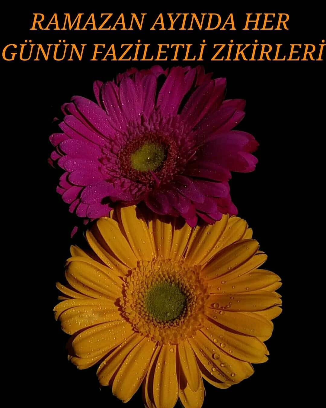 RAMAZAN AYINDA HER GÜNÜN FAZİLETLİ ZİKİRLERİ | www.corek-otu-yagi.com