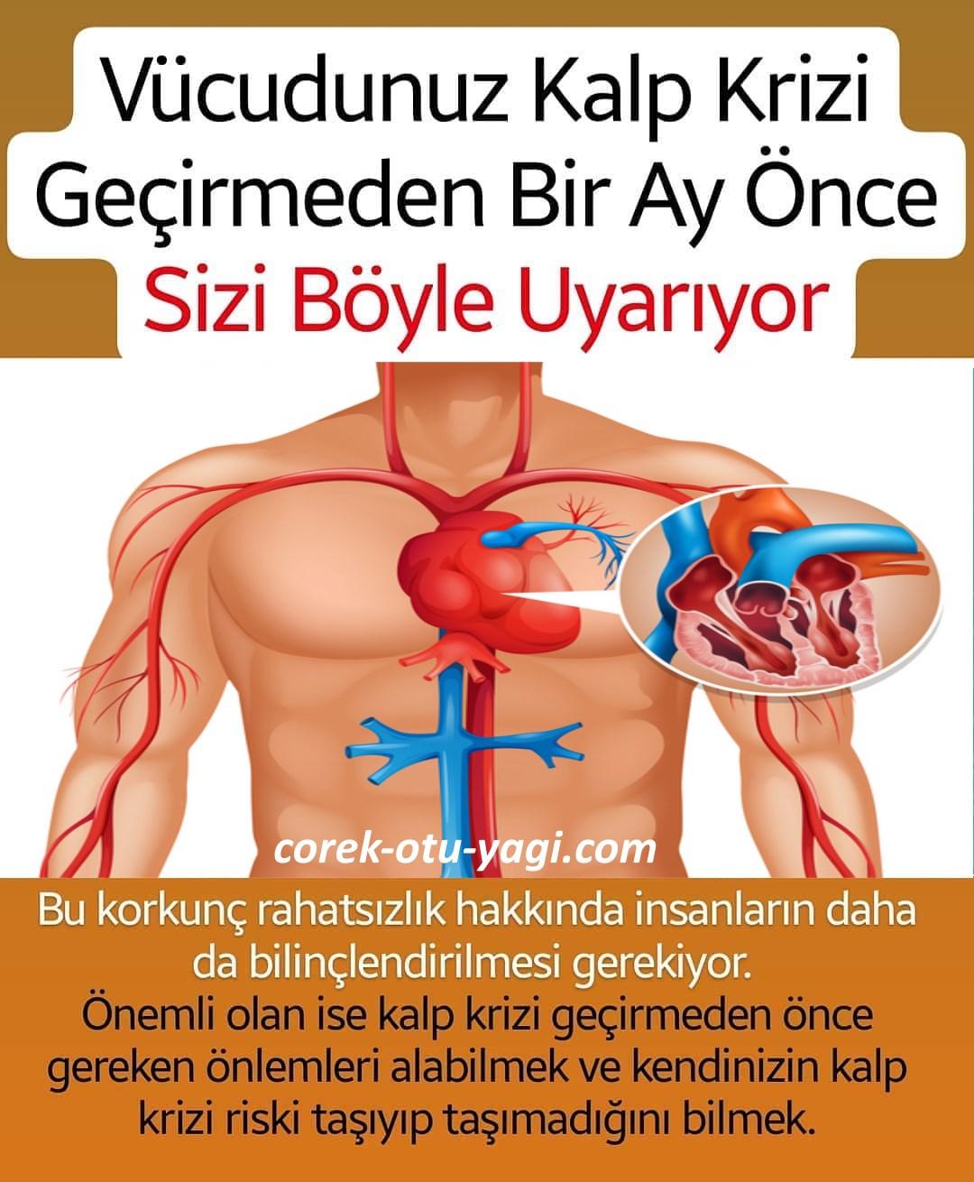 Vücudunuz kalp krizi gerçekleşmeden 1 ay önce sizi uyarıyor! | www.corek-otu-yagi.com