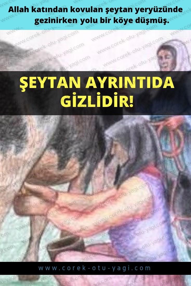 Şeytan Ayrıntıda Gizlidir | www.corek-otu-yagi.com
