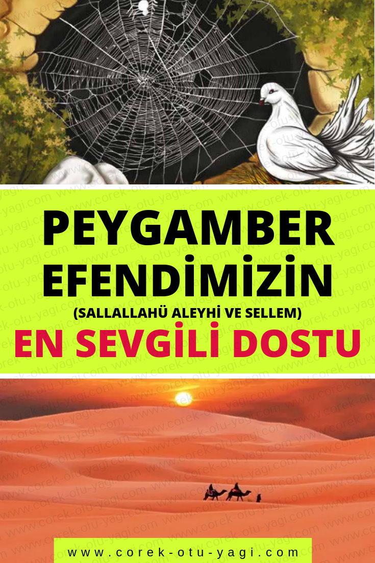 Peygamber Efendimizin (sallallahü aleyhi ve sellem) En Sevgili Dostu | www.corek-otu-yagi.com