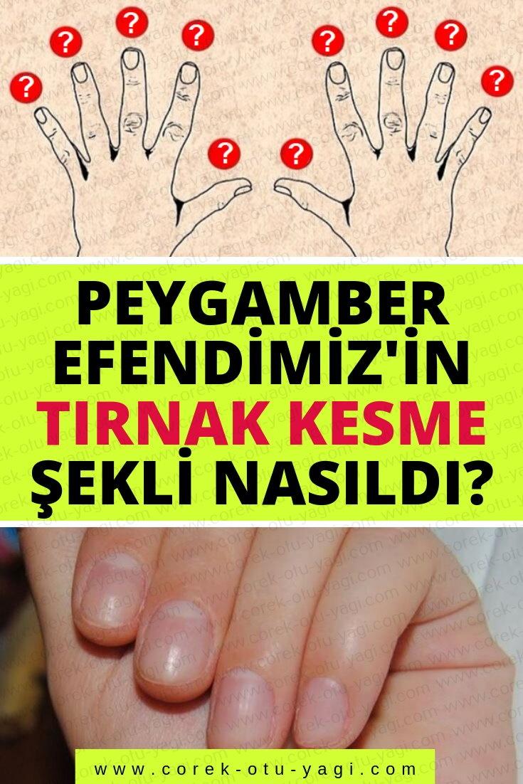 Peygamber Efendimiz'in tırnak kesme şekli nasıldır? | www.corek-otu-yagi.com